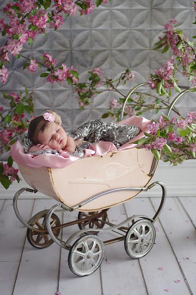 newborn photography FAQs