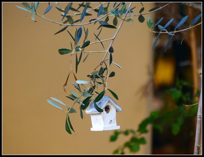 2014-11 Montecatini Alto 174.jpg
