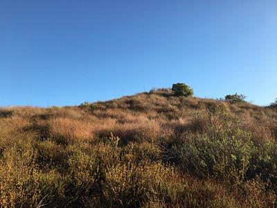 Temescal Peak LPC#51