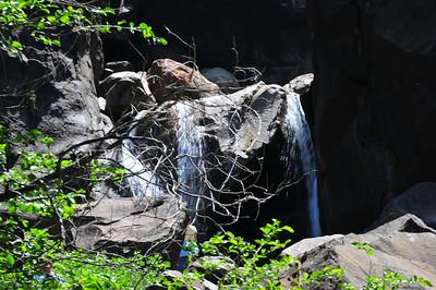 Yosemite July 2008