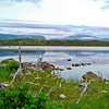 Gros Morne National Park, Newfoundland - 3