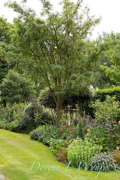 Beechleigh Garden - Jacky O'Leary garden designer_2957.jpg