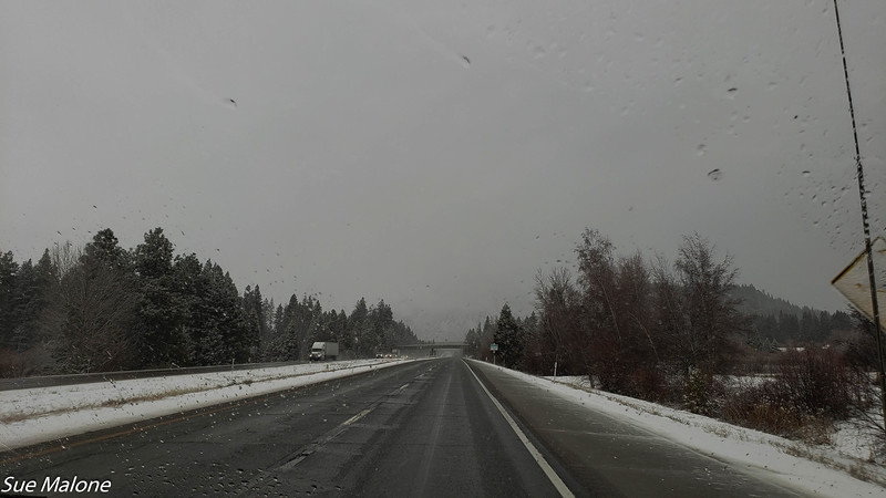 Snow letting up a bit at the invisible Black Butte near Shasta