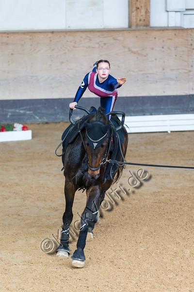 Pferd_Inter_2019_0201_klickvolti.jpg