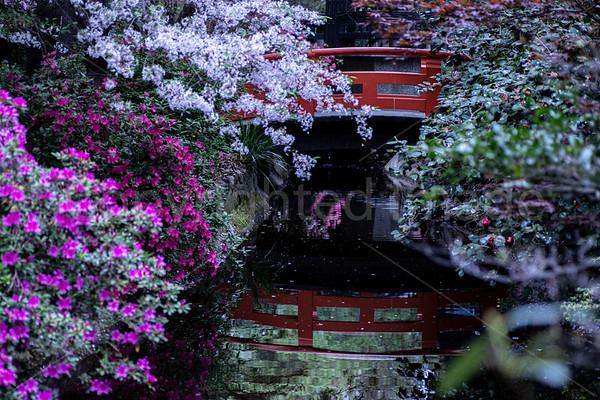 Asian Garden