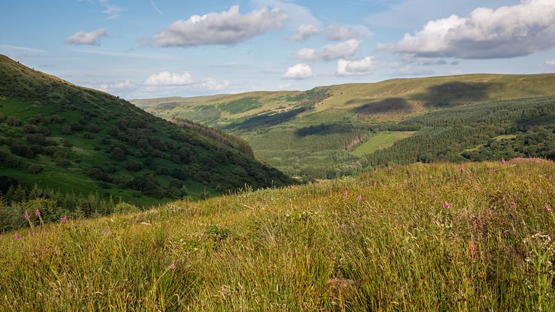 Glyn Collwn valley