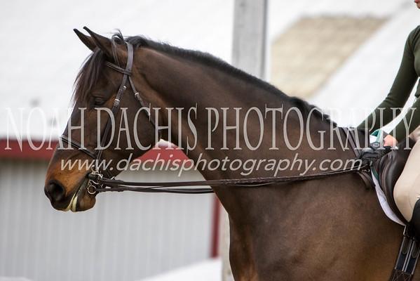 Wet Milford Equestrian Center 3/13/16