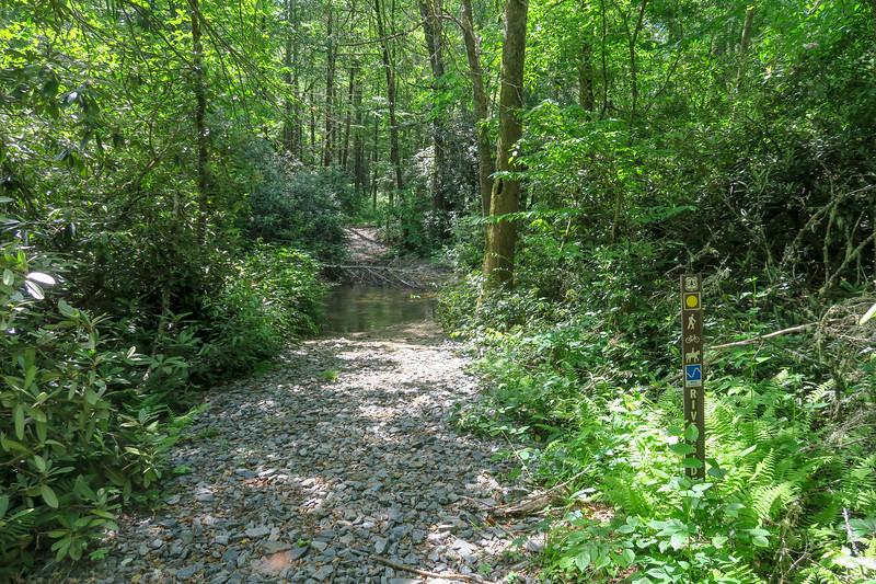 Bradley Creek/Riverside Trail North Junction (Bradley Creek Crossing #1) -- 2,340'