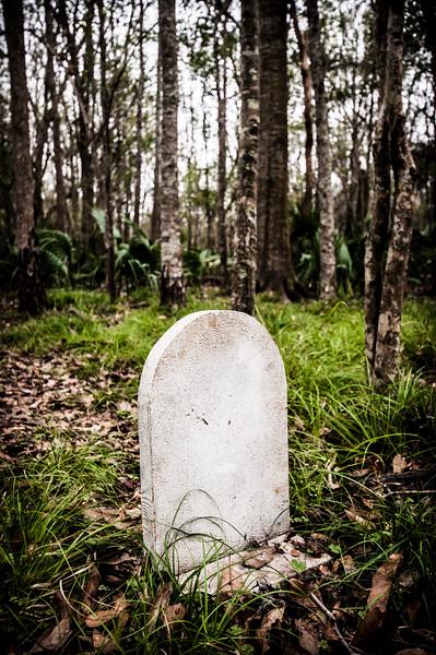 gravestone in the swamp.jpg