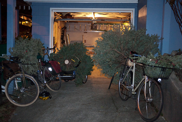 Christmas Tree Bonfire 2010