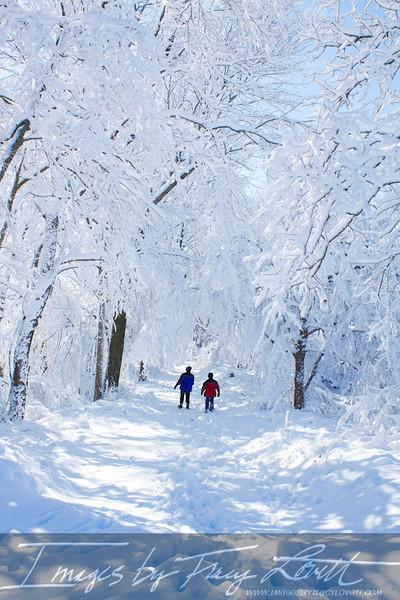 snow_3396 copy.jpg