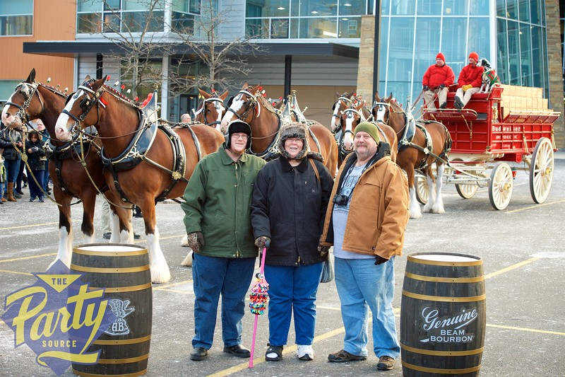 Clydesdale Portraits 142.jpg