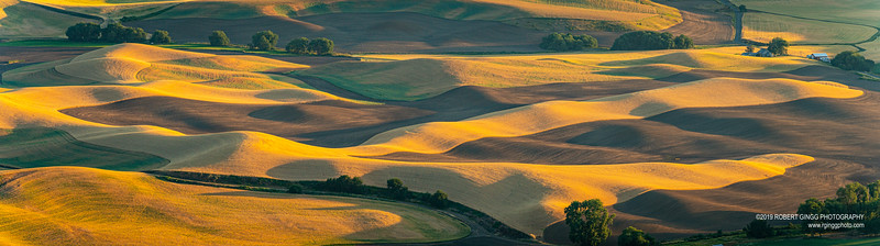 Palouse Day2-1508-Pano.jpg