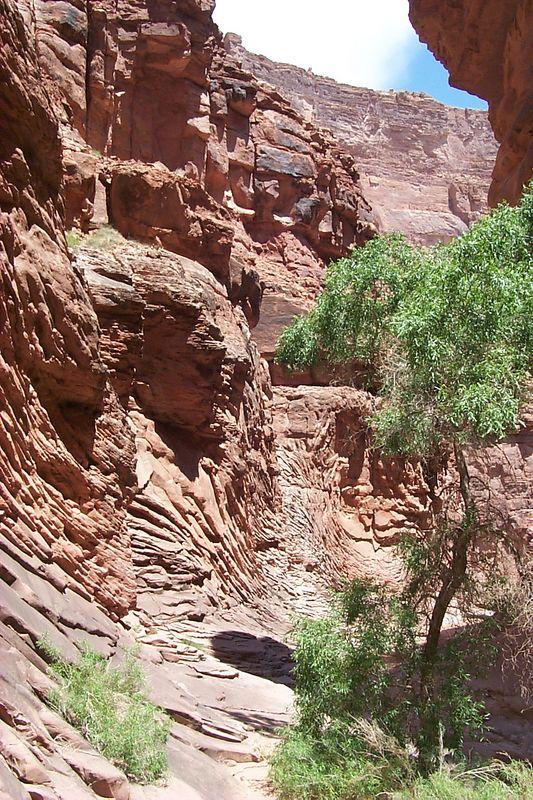 North Canyon View   (May 27, 1999, 12:23pm)