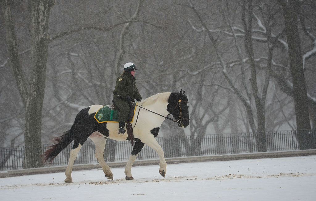 . A park ranger on horse patrol during a snow storm in New York, January 22, 2014.  AFP PHOTO/Emmanuel DUNAND/AFP/Getty Images