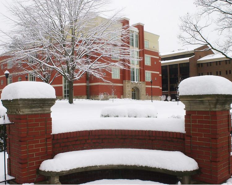 L-Snow-0318.jpg