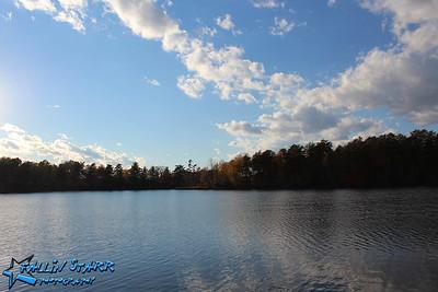 Albany's Pine Bush Preserve