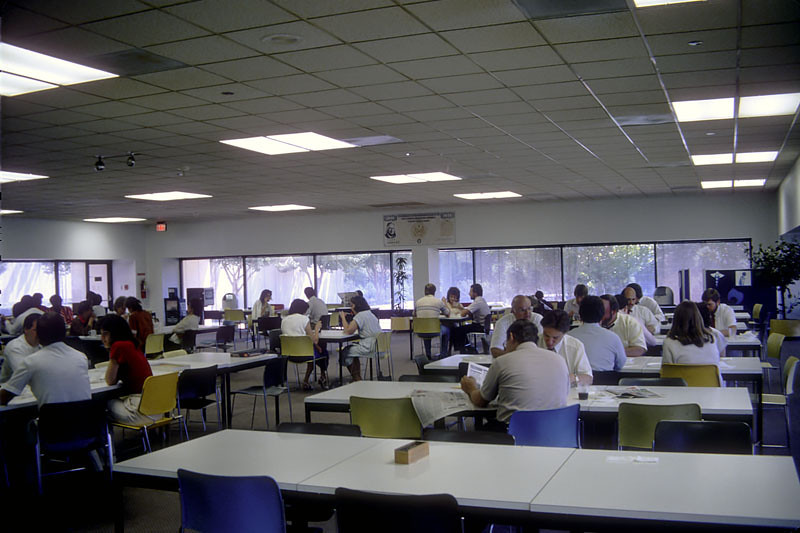 afternoon in the cafeteria.jpg
