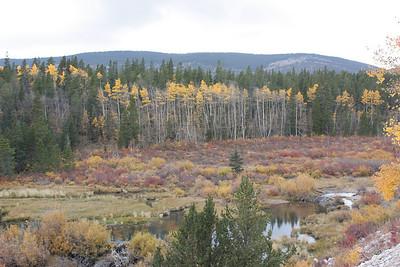 Mt Sherman, 2008