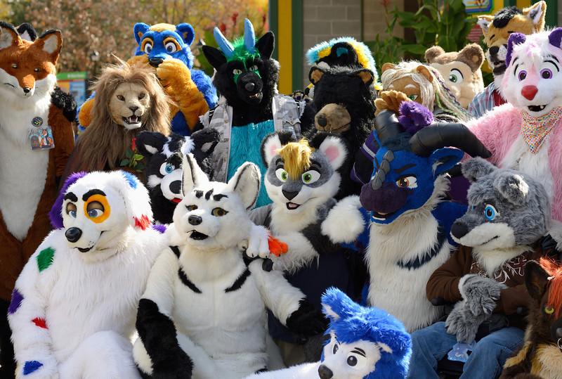 Brookfield Zoo - Boo at the Zoo 2012