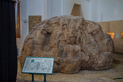 Museum Of Man