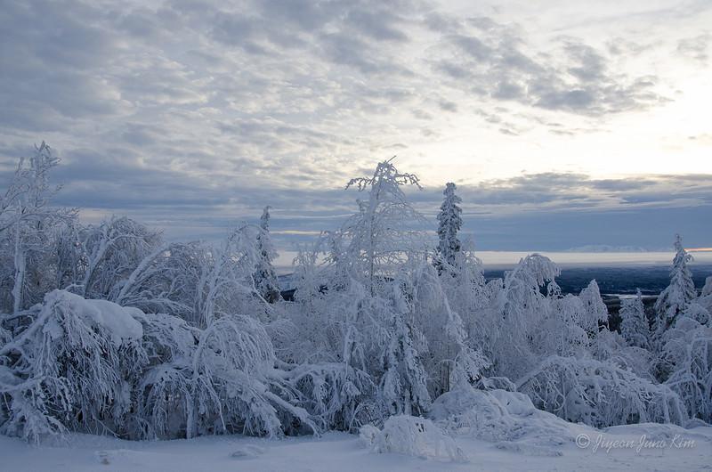 USA-Alaska-Arctic-Circle-2514.jpg
