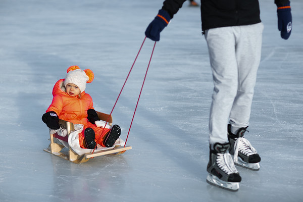 Fam Dec Skating 2020