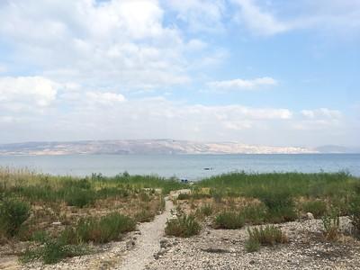 Israel Study Tour (180845)