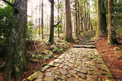 Kanon's Path