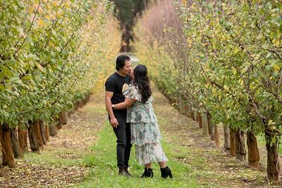 Raeburn orchards shoot