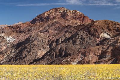 Death Valley, March 2016