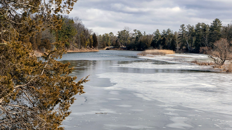 Ontario-Grand-Bend-Pinery-Provincial-Park-46.jpg