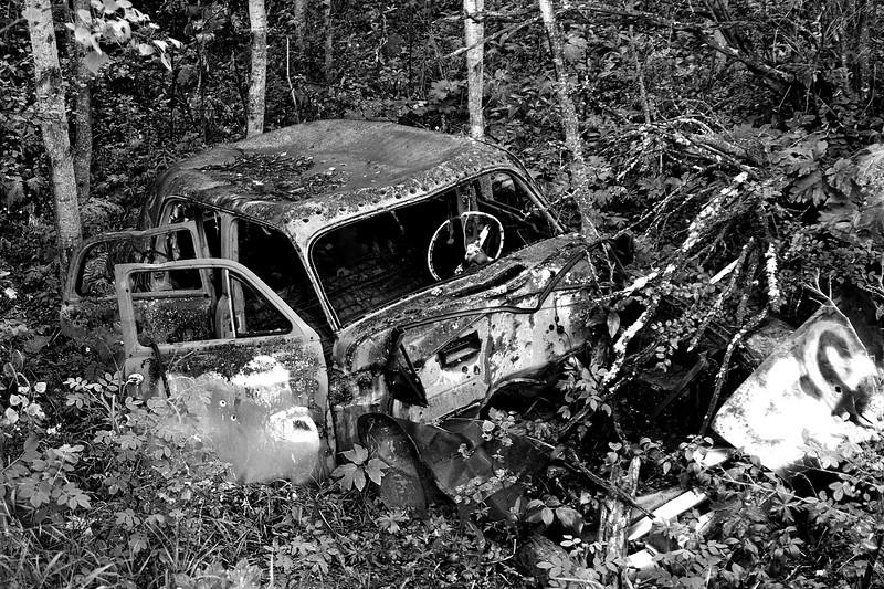 Abandoned car in Cougar Ridge