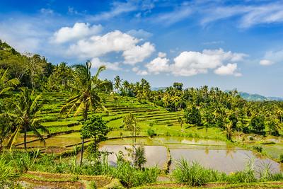 Bali (Indonesia)