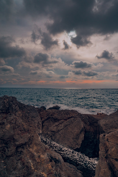 20140412_KW_LN_Israel_Shores.jpg