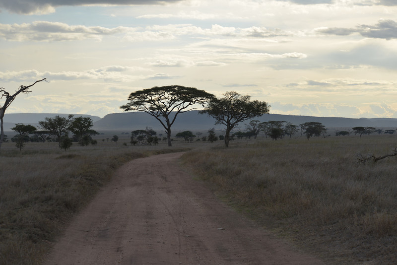 East Africa Safari 353.jpg