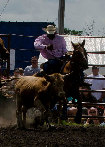 Saturday Steer Westling 2012