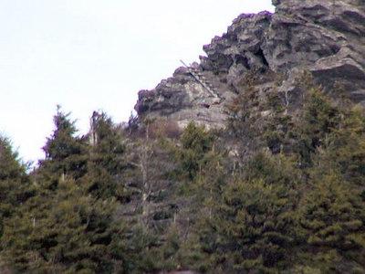 8 Ladders-on-MacRae-Peak.jpg