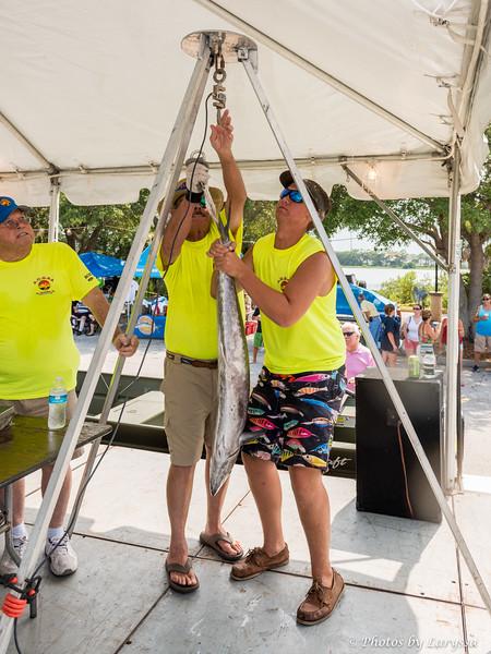 ACGFA Kingfish Day 1-0031.jpg