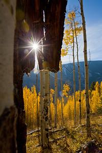 Sunburst at Beaver Creek, CO