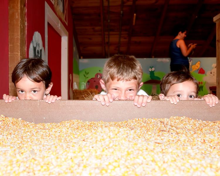 024 Doan Family At Purina Farms 6-11 - Jaden Dakota Nicholas (10x8).jpg