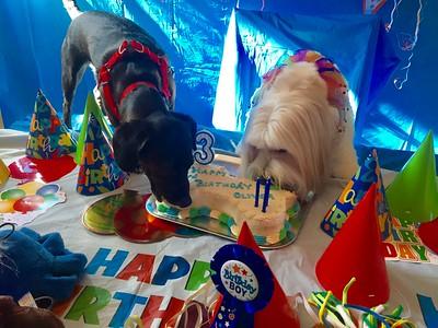 3-2017 Oliver's Birthday