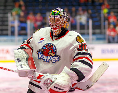 01-16-16 IceHogs vs. Barracuda