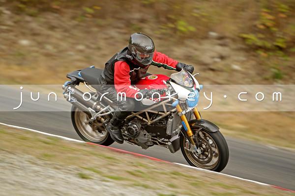 Ducati - Tricolor Monster