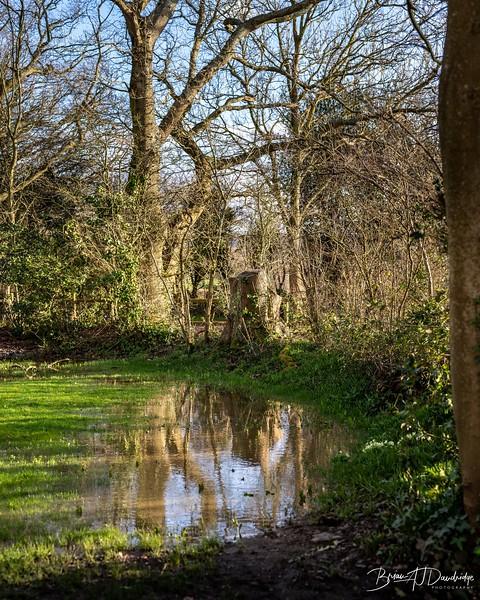 Walk to Oldland Mill-1270.jpg