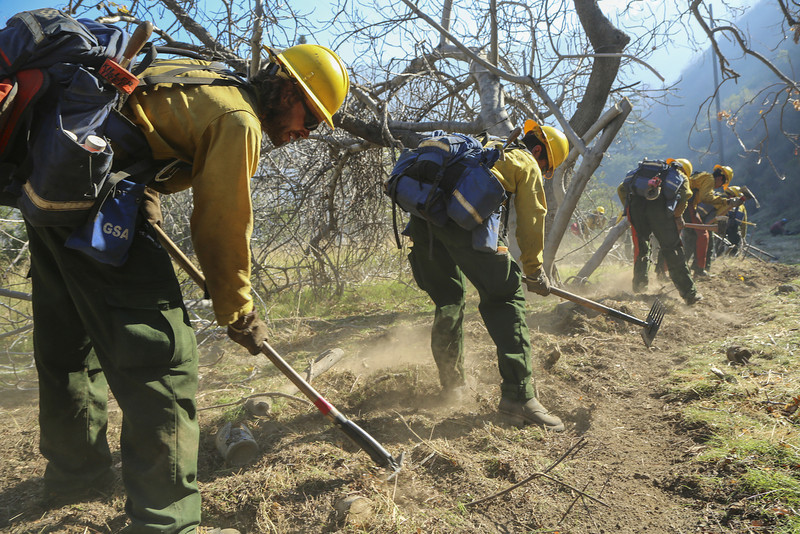 . Members of a U.S. Forest Service clear brush at the Colby Fire  on a hillside above Highway 39 on January 17, 2014 in Azusa, California. Three men have been arrested and charged with starting the fire that has now destroyed 1,700 acres of land and several homes around Glendora and Azusa in the San Gabriel Valley near Angeles National Forest, prompting officials to order evacuations for houses near the fire. (Photo by Jonathan Alcorn/Getty Images)
