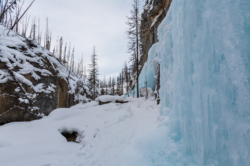 Wall of frozen ice