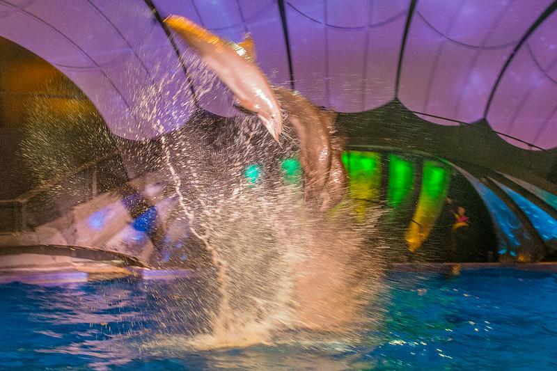 GA Aquarium with Linc, Ali & Abe-112.jpg