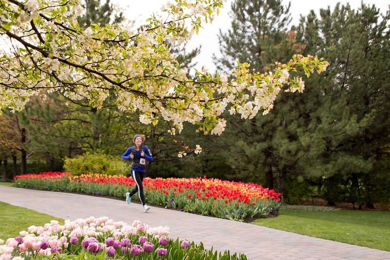 TulipFestHalfMarathon_Runners_Gardens_2015_IMG_4623.jpg