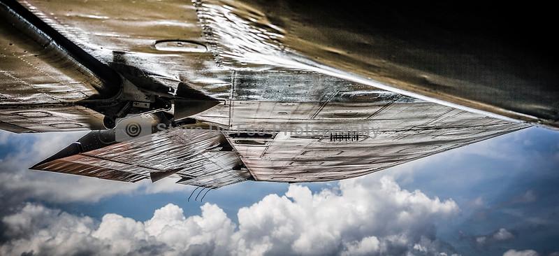 Wing001_HDR2.jpg